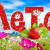 Загадки для детей про лето и летние месяцы с ответами