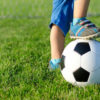 Загадки про веселый мяч для детей