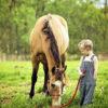25 загадок про лошадей для малышей и детей постарше