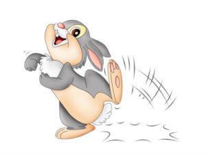 загадка про зайца