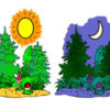 Загадки про части суток: ночь, день, утро и вечер