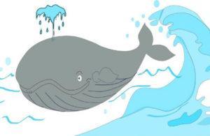 загадки про кита