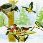 загадки про зимующих птиц