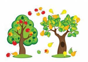загадки про деревья