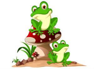 загадки про лягушку