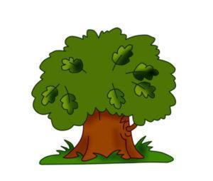 загадки про дуб